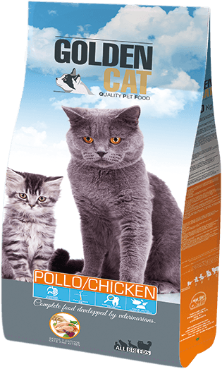 Golden Cat Pollo
