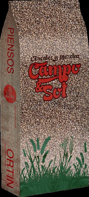 Trigo Campo & Sol
